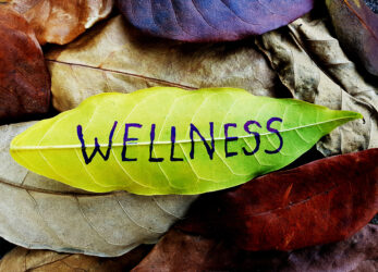 wellbeing-gifts